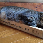 14.catscratching box kit-2